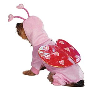 dog wearing love bug costume