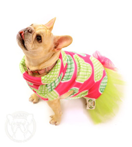 dog wearing pink and green fleece heart sweater